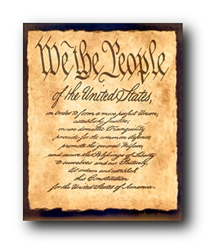 Wall Decor Constitution of The United States US Historical We The People of The United States Art Print Poster (16x20)