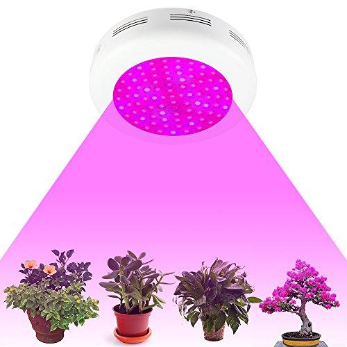 900 Watt Led Grow Light - 8