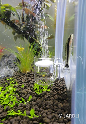Pollen Glass CO2 Diffuser for Aquarium Planted Tank (3/4