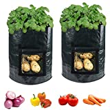 accmor 2 Pack 10 Gallon Garden Potato Grow Bags Planter Bag, Heavy Duty & Durable Bags with Flap and Handles Aeration Fabric Pots Heavy Duty for Grow Vegetables: Potato, Carrot, Tomato, Onion