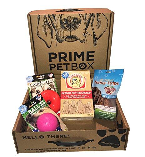 Box Dog Toy - Prime Pet Box Ruff & Tuff Large Dog Gift Box; Ruff Dawg Toys