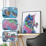 Denzar Special Shaped 5D DIY Diamond Painting Kit,Cute Animal Partial Drill Embroidery Cross Stitch Arts Craft Canvas for Wall Decoration (30X30CM-Kitten)