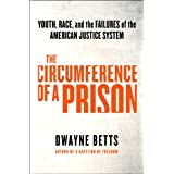 Circling Disaster: Youth, Race, and the Failures of the American Justice System