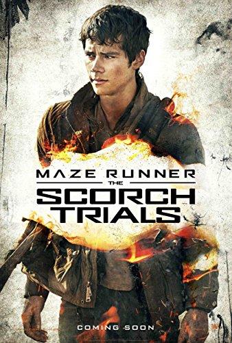 "Maze Runner : Scorch Trials - Movie Poster THOMAS (24 x 36"" Inches) , Glossy Finish (Thick): Dylan O'Brien, Kaya Scodelario"
