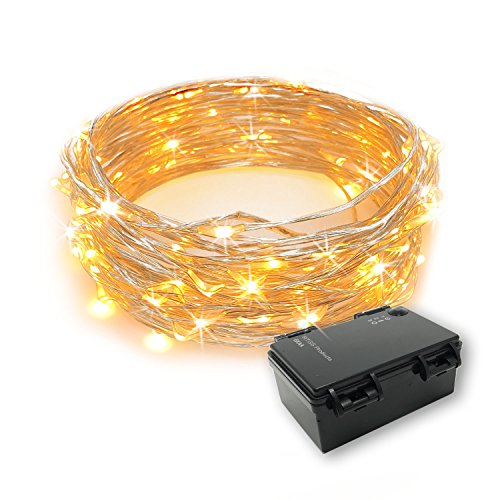 RTGS 60 LEDs String Lights Battery Operated on 20 Feet Long Silver Color Wire, Indoor and Outdoor with Waterproof Battery Box and Timer (WARM WHITE)