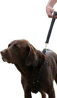 """product image for Hemp Basic Canvas Dog Harness (3/4"""" Medium, Black)"""
