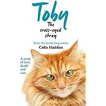 Toby The Cross-Eyed Stray