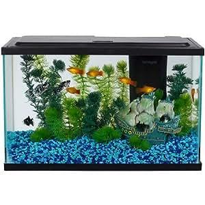 Aqua culture aquarium starter kit 5 gallons for Amazon fish tanks