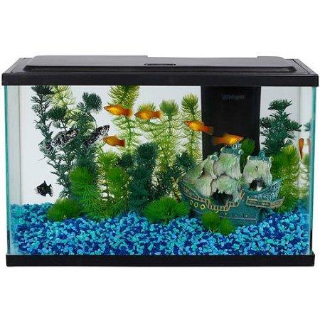 5 Gallon Tank Kit (Aqua Culture Aquarium Starter Kit 5 gallons Fish Tank with LED lighting)