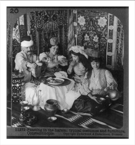 Histo (Harem Costume Images)