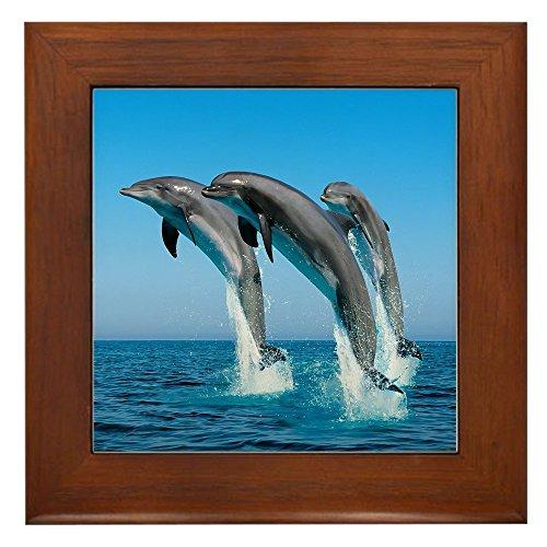 Whale Framed Tile - Framed Tile Dolphins Dancing