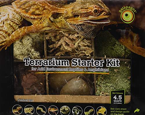 - Galapagos Terrarium Deco Starter Kit for Dry Environment