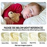 NTBAY Microfiber Zippered Toddler Pillowcases, 2