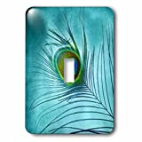 3dRose lsp_211236_1 Peacock Feather On Turquoise Background - Single Toggle Switch