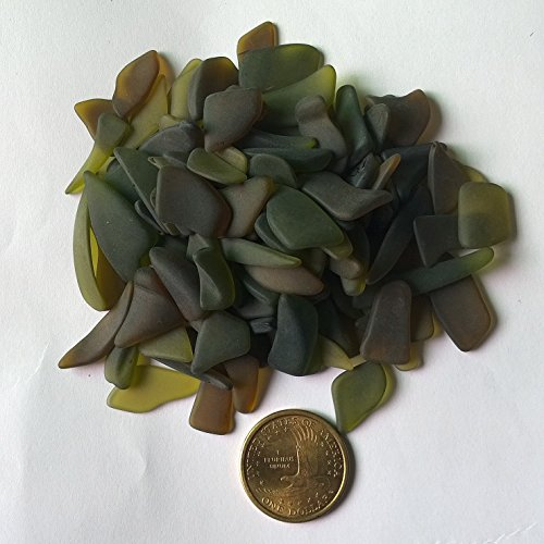 1/4 Lb Beach Sea Glass Art Beads Surf-tumbled Flat Freeform & Brown Undrilled Recycled (medium), Plus FREE Gift Package JCT ECO
