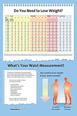 Amazon Bmi Chart And Waist Measurement Poster 12x18 Exam Room