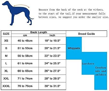 Whippet Raincoats with Reflective Bar Morezi Greyhound Raincoat Rain//Waterproof Stylish Dog Coat for Greyhounds Yellow XS Lurchers and Whippets Adjustable Vest
