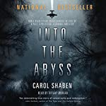 Into the Abyss: How a Deadly Plane Crash Changed the Lives of a Pilot, a Politician, a Criminal and a Cop | Carol Shaben