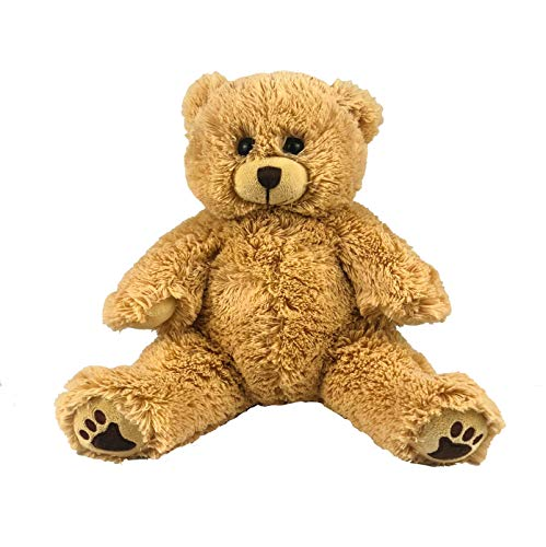Bearegards.com Baby Heartbeat Bear - Recordable Stuffed 8