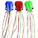 Hengda Kite-Pack 3 Colors(Red&Green&Blue)Beautiful Large Easy Flyer Kite for Kids-software octopus-It's BIG! 31 Inches Wide with Long Tail 157 Inches Long-Perfect for Beach or Park by Hengda kite