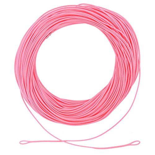 M MAXIMUMCATCH Maxcatch WF5F Pink Fly Line Weight Forward Floating Fly Fishing Line with Welded Loops 100 ft Review