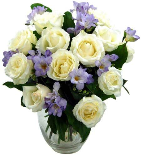 Clare Florist Breathtaking Amethyst Bouquet With Free Next Day Delivery Rose And Freesia Fresh Flowers Perfect For Birthdays Anniversaries And Thank You Gifts Amazon Co Uk Garden Outdoors