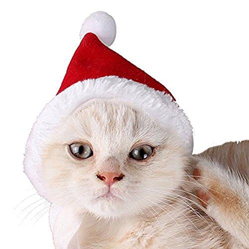 2pcs Pet Cat Dog Santa Hat Scarf Christmas Xmas Red Holiday Costume - 1
