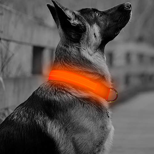 Vizbrite Collar Reflective Flashing Medium
