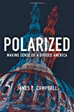 img - for Polarized: Making Sense of a Divided America book / textbook / text book