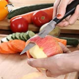 VIBON 3.5 Inches Paring Knife, Fruit Knife Ktchen