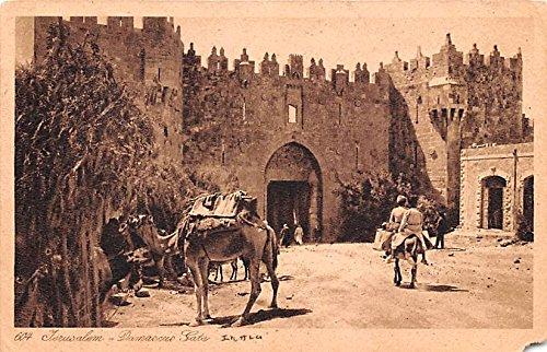 Israel Old Vintage Antique Post Card Jerusalem Damascus Gate Unused