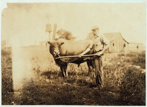 1916 child labor photo Dairyman. Location: Kentucky / Lewis W. Hine. Vintage a7