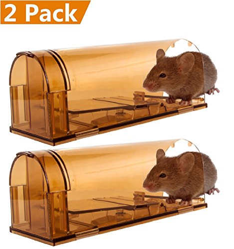 Box Trap (CaptSure Humane Smart Mouse Trap, Live Catch and Release Rodent Trap Cage Box, No Kill/Pain, Children & Pet Safe, For Indoor / Outdoor, Reusable, Small Rat/Mice Catcher That Works. Plastic (2 Pack))