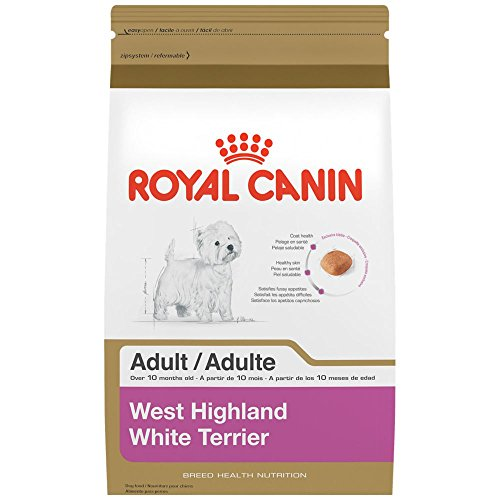 ROYAL CANIN BREED HEALTH NUTRITION West Highland White Terrier Adult dry dog food, 10-Pound
