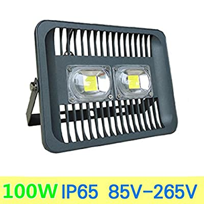 100W, Warm White : 100W LED Flood Light 30W 50W Projector Waterproof IP66 230V 220V Flood Lamp Outdoor Spotlight for Gargen Garage Wall Lamp