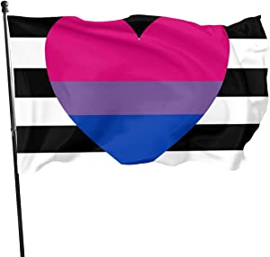 DUANDUAN Heterosexual Biromantic Pride Flag Themed Welcome Home House Garden Yard Decor 3 X 5 Ft Jumbo Large Huge Flag Party Outdoor Outside Decorations Ornament Picks