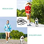 oneisall Hands Free Dog Leash,Multifunctional Dog Training Leads,8ft Nylon Double Leash for Puppy,Small & Large Dogs 12