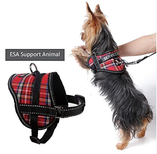 Register My Service Animal, LLC Emotional Support Animal Harness & Matching Leash Set For Small & Teacup Dogs | Three Fun Patches | Four Colors | Three sizes: 11'' - 19'' Girth by Register My Service Animal, LLC
