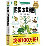 img - for Outline of Herb Medicine in Illustration - Classic Popular Illustrated Edition - Classic Edition in Vernacular and Colorful Illustration (Chinese Edition) book / textbook / text book