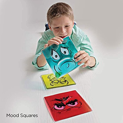 Fun and Function Social Emotion Regulation Box for Kids with Special Needs by Fun and Function