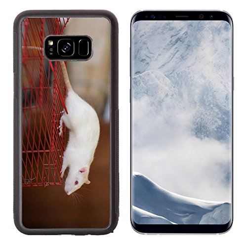 Liili Premium Samsung Galaxy S8 Plus Aluminum Backplate Bumper Snap Case Portrait of a white domestic rat on a cage IMAGE ID 19016196