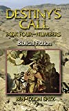 Destiny's Call: Book Four - Numbers: Biblical Fiction (Volume 4)
