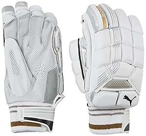 Puma, Cricket, Evo Special Edition Batting Gloves, Black, Right Hand