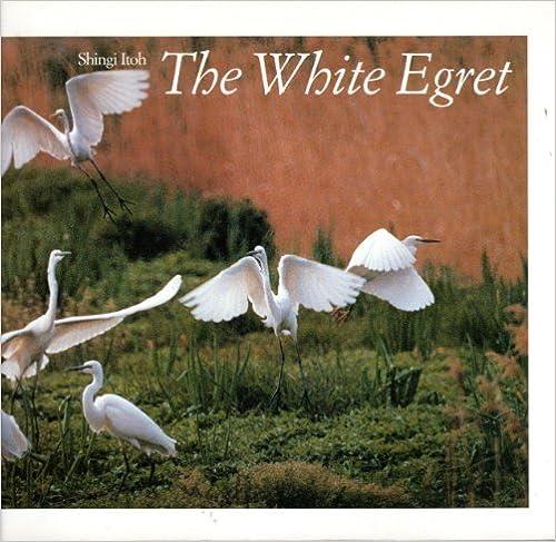 Book The White Egret by Shingi Itoh (1988-11-03)