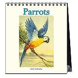 Parrots (CL54444)