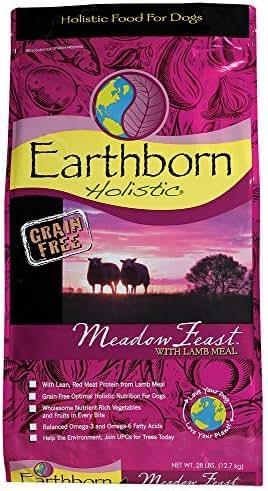 Dog Food: Earthborn Holistic Meadow Feast