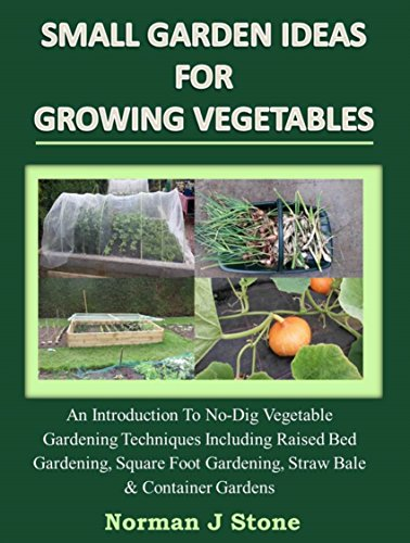 Small Garden Ideas For Growing Vegetables:An Introduction To No-Dig Gardening Techniques Including Raised Bed Gardening, Square Foot Gardening, Straw Bale And Container Vegetable Gardens by [Stone, Norman J, Paris, James]