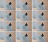 Fleur De Lis Curtain Holdbacks Cast Iron French Vintage-Look 4'' deep, F-15, Set of 12