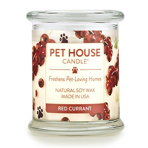 One Fur All - 100% Natural Soy Wax Candle, 20 Fragrances - Pet Odor Eliminator, Appx 60 Hrs Burn Time, Non-Toxic, Eco-Friendly Reusable Glass Jar Scented Candles – Pet House ()