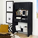 South Shore Narrow and Tall Computer Desk with Hutch and Lots of Storage, Black Onyx